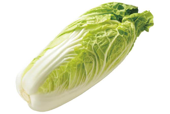 ミニ白菜 イメージ写真