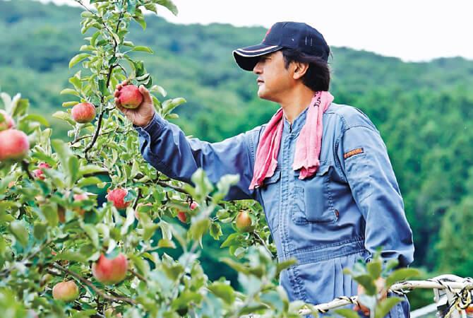 10月のりんご生産者、生産者の一人、羽山園芸組合(福島県二本松市)の武藤喜幸さん